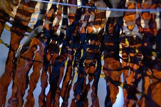 Fra Av-augo-gjorde-han-stoveglas - Foto Theodor With (TWF_5422)